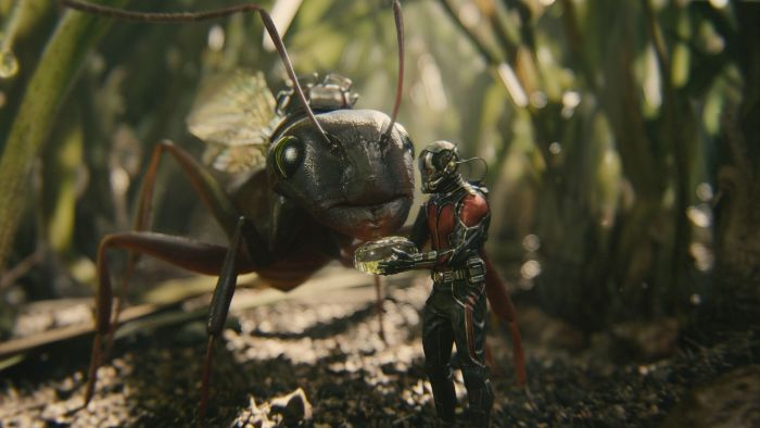 Ant-Man-Microverse-Photo-Antony-Feeding